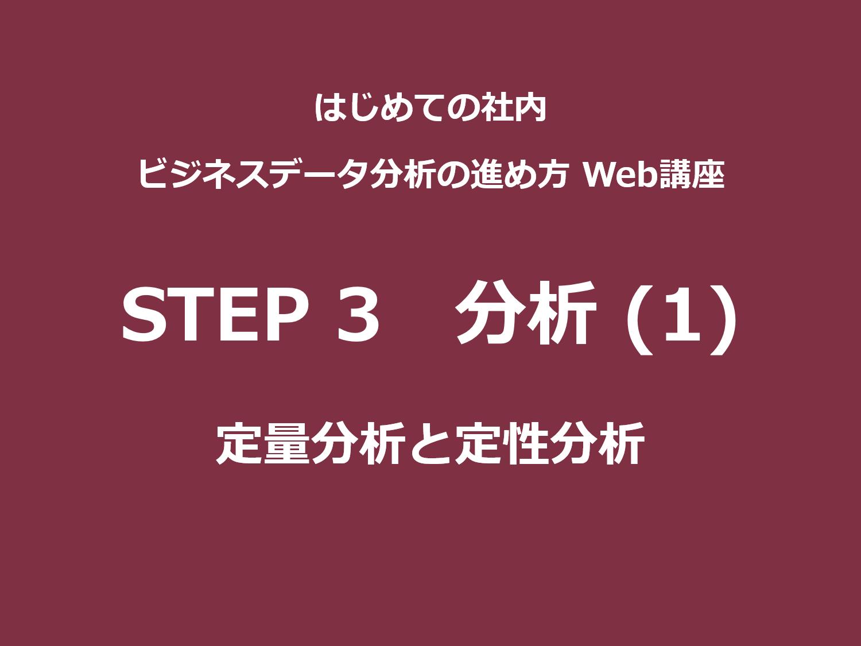 STEP 3(分析)その1|定量分析と定性分析